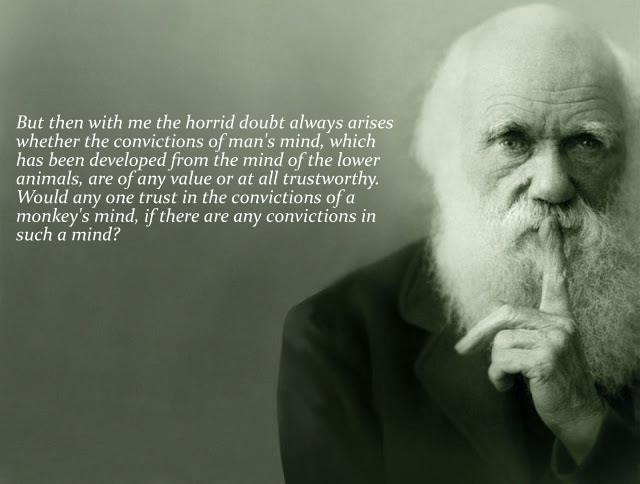 darwins doubt